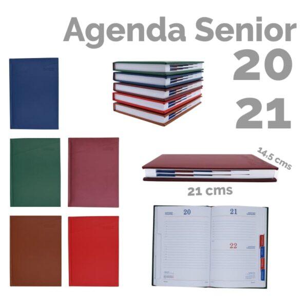 Agenda 2021 Senior AQ2101 vista general
